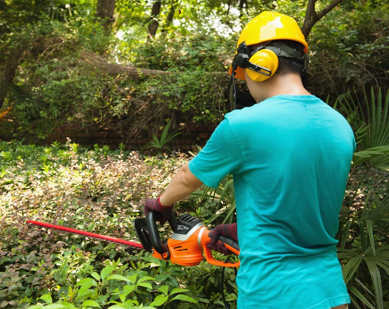 Best Corded Hedge Trimmers Reviews