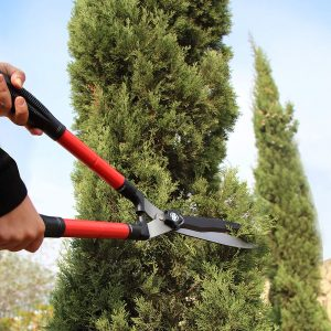 Best Hedge Shears – Reviews and Tips for 2021