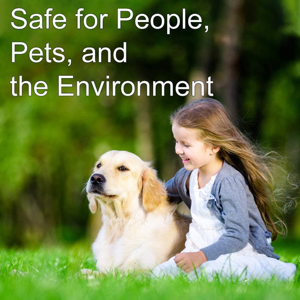Best Pet Friendly Weed Killer Reviews and Buying Guide 2020