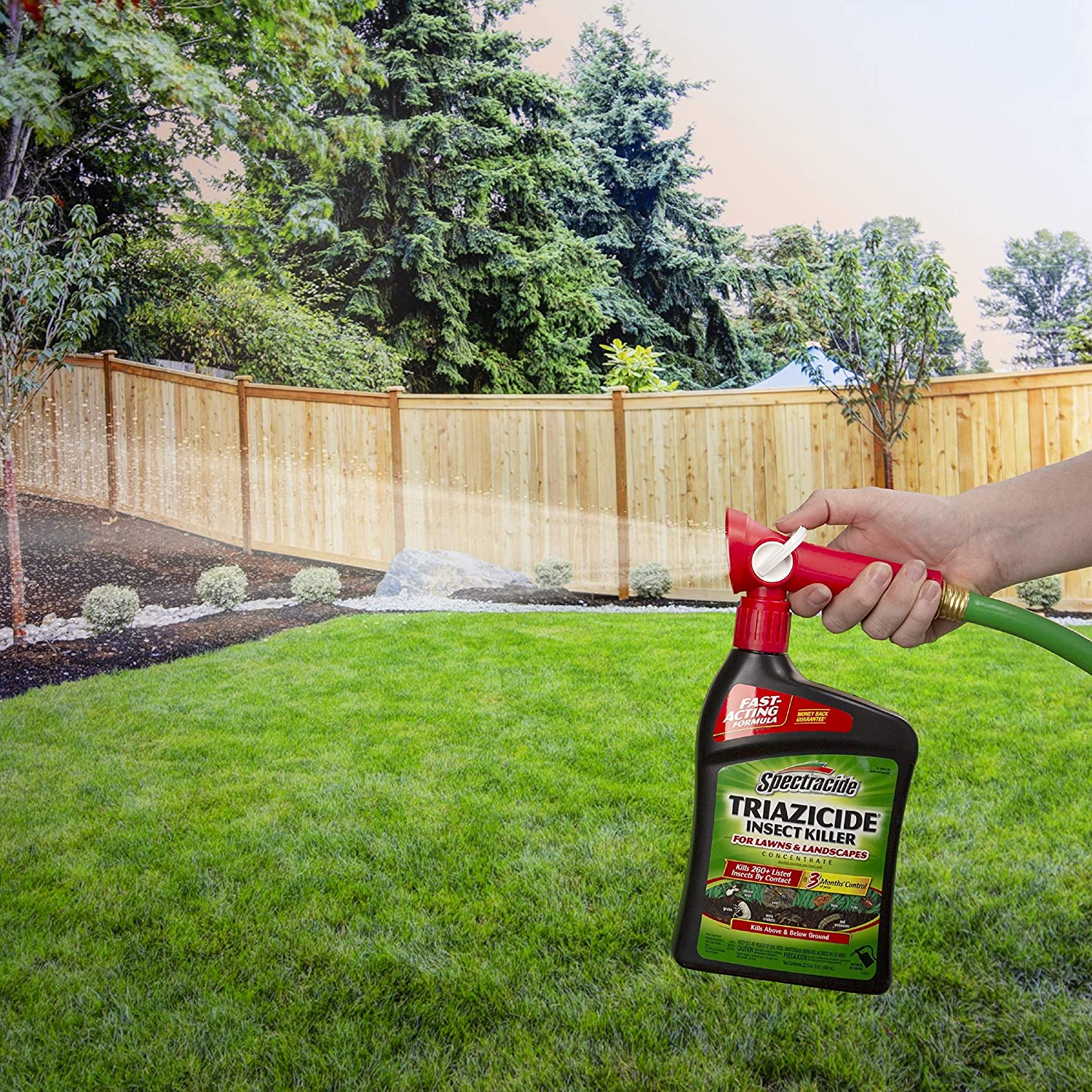 Best Insect Killers for Lawns