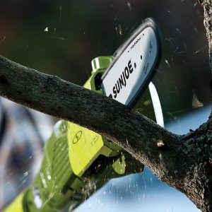 Best Electric Saws for Cutting Trees