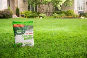 Best Fertilizer for Grass During Spring, Summer, Fall and Winter