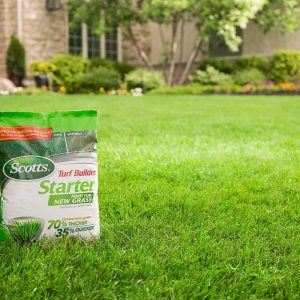 What is the Best Fertilizer for Grass?