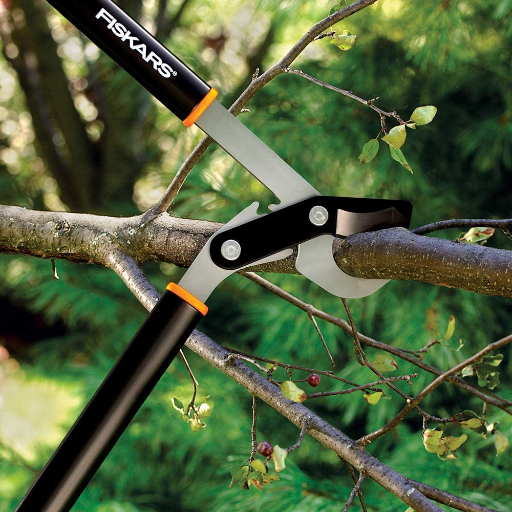 Best Bypass Loppers Reviews and Buying Guide 2021