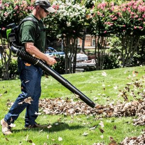What is the Best Battery Backpack Blower?