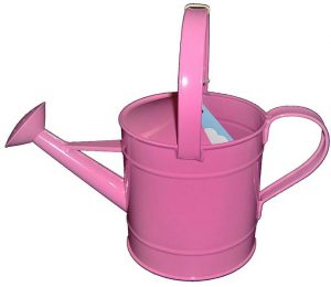 Best Watering Can for Seedlings Reviews and Buying Guide 2021
