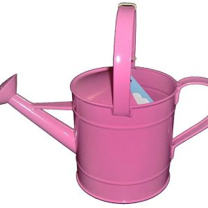 What are the Best Watering Cans for Seedlings?