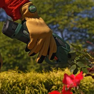 Best Electric Pruning Shears Reviews and Buying Guide 2021