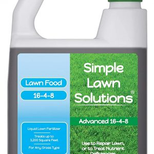 What is the Best Fertilizer for Grass in Spring?