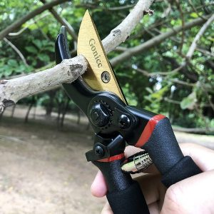 Best Pruning Shears for Roses Reviews and Buying Guide 2021