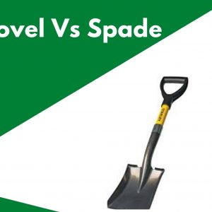 Shovel Vs Spade: Comparison, Uses and Definition (Updated for 2021)