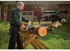 Best Chainsaws Under 300 Reviews and Buying Guide 2021